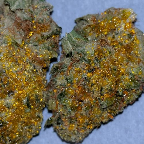 chrystalline sun rocks weed, difference between moonrocks and sun rocks weed, difference between sun rocks and moon rocks weed, diffrence between sun rocks and moon rocks weed, how long can weed barrier fabric be exposed to sun without rocks on top, how mch sun rocks weed, how to make sun rocks weed, making your own sun rocks weed, moon rocks and sun rocks weed, moon rocks vs sun rocks weed, moonrock weed vs sun rocks, reddit how to make sun rocks weed, snoop dogg sun rocks weed, sun rocks and moon rocks weed, sun rocks vs moon rocks weed, sun rocks weed, sun rocks weed amsterdam, sun rocks weed and moon 4ock weed, sun rocks weed colorado, sun rocks weed denver, sun rocks weed for sale, sun rocks weed how to make, sun rocks weed ingredients, sun rocks weed leafly, sun rocks weed meme, sun rocks weed near 90036, sun rocks weed near me, sun rocks weed pics, sun rocks weed price, sun rocks weed review, sun rocks weed seeds, sun rocks weed snoop, sun rocks weed sold near 90036, sun rocks weed strain, sun rocks weed strain price, sun rocks weed thc level, sun rocks weed video, sun rocks weed vs moonrock, sun rocks weed youtube, weed sun rocks, what are sun rocks weed, what is sun rocks weed, where can i buy sun rocks weed, where to buy sun rocks weed No